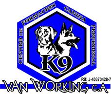 Adiestramiento Y Entrenamiento Canino Van Working ...