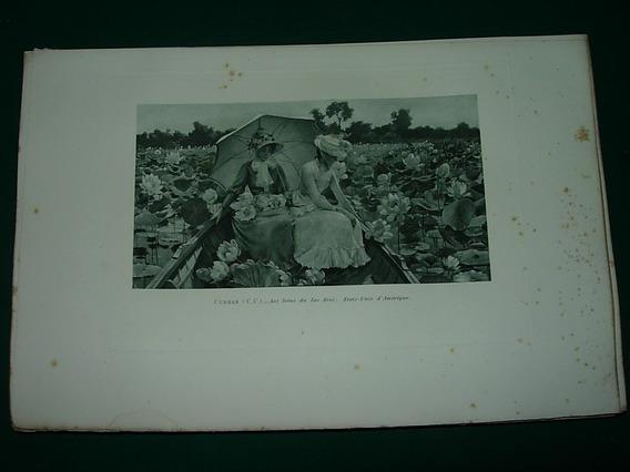 Grabado Antiguo Francia Curran Lotus Du Lac Erie Flores Dama