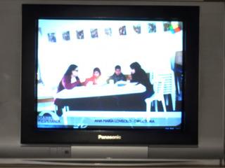 Tv 21 Plana Real Flat Panasonic Excelente Estado!