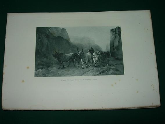 Grabado Antiguo Francia Paris Tropeu De Valfiore Vacas Campo