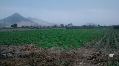 Vendo Terreno En Aucayama Chacra Y Mar