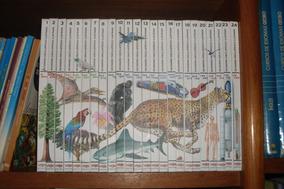 Dicionário Enciclopédico Ilustrado Veja Larousse 24 Vols #