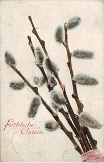 17219 Áustria Cartão Postal Circulado Bicho-da-seda 1906