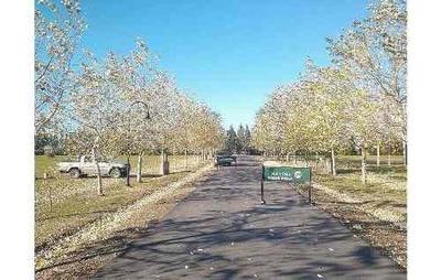Vendo O Permuto Lote Haras Del Sur Ii - 1000mts2 - Ruta 2