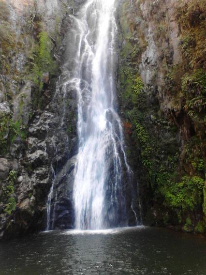 Coalicion Vende 5 Tareas En Constanza, Próximo Aguas Blanca-