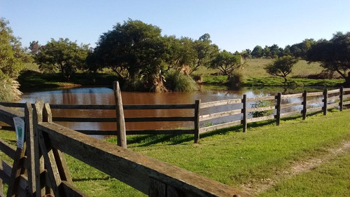 Campo 1ha-1,5ha,lago,vistas,cerca Pza Toros Colonia Dde65mil