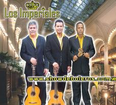 Show De Boleros,trio De Guitarra, Serenata,bailable,show 60s