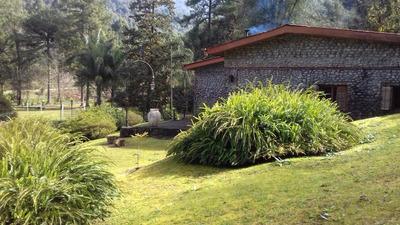 Campo Unico En Selva De Yungas