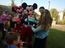 Arriendo De Mickey Mouse Ó Minnie Corporeo