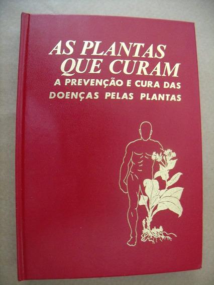 Plantas Que Curam Prevenção E Cura Doenças Pelas Plantas