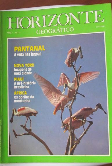 Horizonte Geográfico No 12 - Pantanal