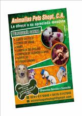 Peluquería Canina Adomicilio