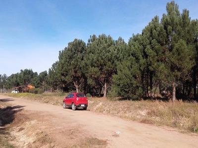 Suc Lomas Terrenos Completamente Financiados A Pura Cuota De
