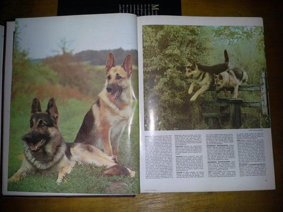 Enciclopédia Canina - Rara - Antiga