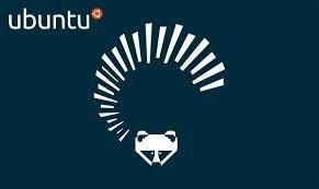 Ubuntu 13.4 Frete Grátis