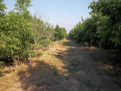 11,2 Hectareas A 1,5 Kms De Lampa Centro