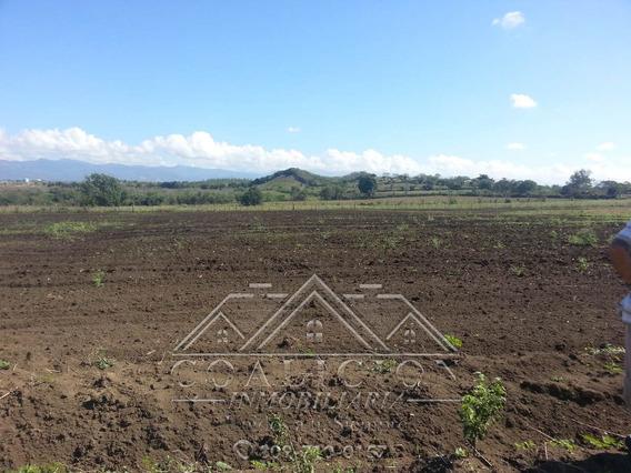 Coalicion Vende Finca 53 Tareas En Guayacanes 100% Agrícola