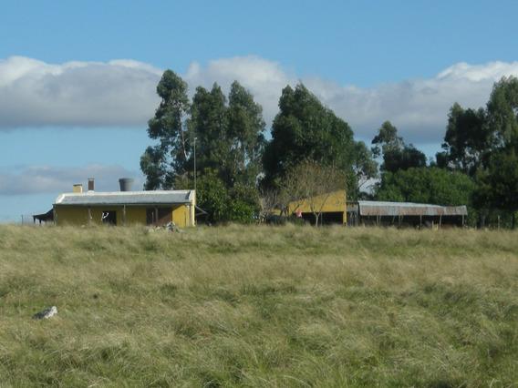 Establecimiento Funcionando, Completo En Zona Bonita Y Alta.