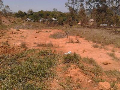 Terreno Em São Roque - Sp 5.000 M² Em Futura Vila Particular