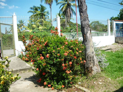 Alquiler Vacacional Boca De Uchire