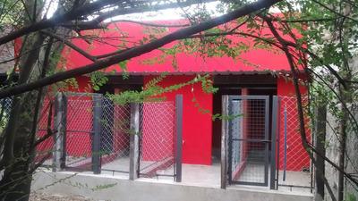 Pensionado Canino Bamboo - Muy Cerca De Capital Federal
