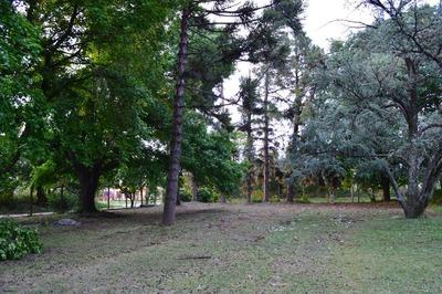 Casa Quinta Con Añosa Arboleda + 2 Lotes De 7200 M2 C/u