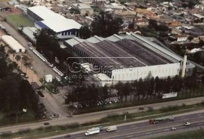 Galpao Industrial - Jardim Fatima - Ref: 15946 - V-15946