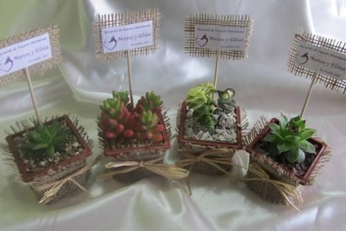 Recuerdos De Bautizo Con Cactus.Recuerdos Matrimonio Bautizo Plantas Suculentas Y Cactus