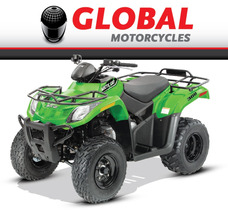 Arctic-cat - Atv Recreation 300 Lg - Global Motorcycles
