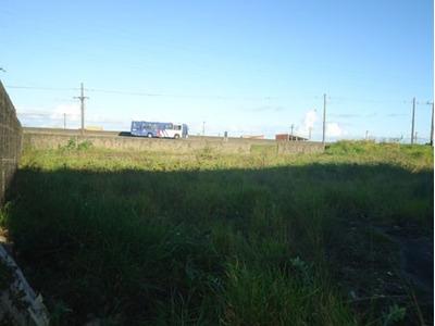 Área Excelente Na Marginal Da Rodovia - Ch.cibratel Ref.1000
