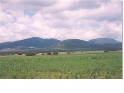 Venta De Rancho 4,5,6 Ò Mas Hectareas..!!! Aprovecha..