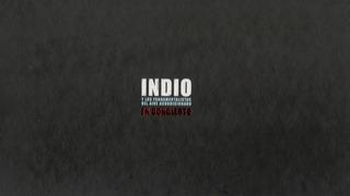 Indio Solari En Concierto 2 Cd + 2 Dvd La Pelicula Redondos