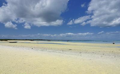 Terreno - Ilha Encarnação De Salinas - Próximo À Praia