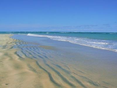 Alquilo Solar Playa Boca Chica