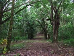 Para Desarrollo De Quintas Ecológicas Ubicada A 5 Min Del Ce