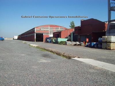 Excelente Edificio Industrial