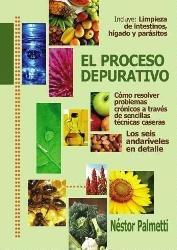 El Proceso Depurativo - Nestor Palmetti - Libro Envio En Dia