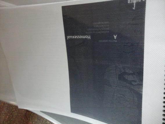 Livro A Experiencia Homossexual - Copia (xerox)