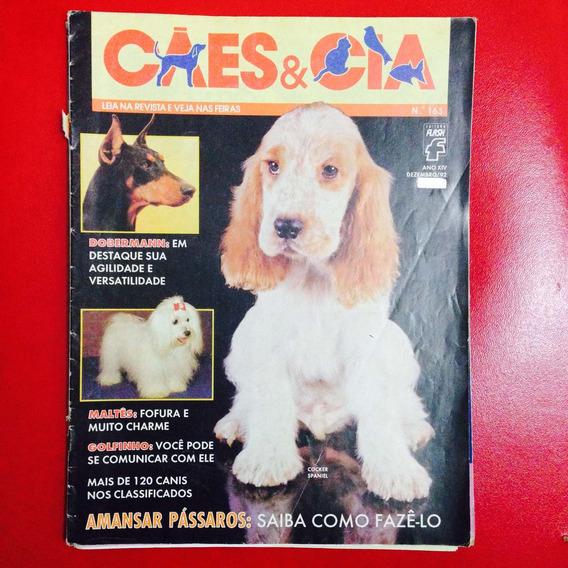 Cães E Cia - Dobermann