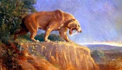 Tigre Dientes De Sable - Charles R Knight - Lámina 45x30 Cm.