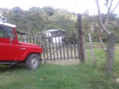 Se Vende Finca En San Luis Bajo - Silvania