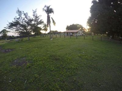 Fazenda À Venda Em Pacaraima