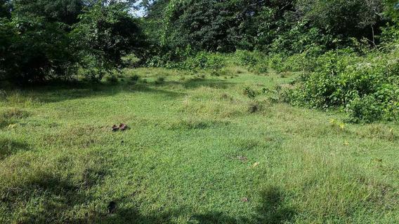 Terreno De 6.5 Tareas En Zona Agradable Y Fresca