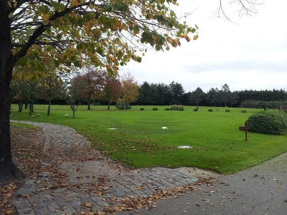 Parcela Cementerio Privado Bella Vista (nunca Se Utilizó)