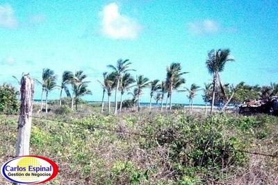 Terreno Con Playa De Venta En Punta Cana, República Dominica