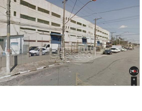 Galpao Industrial - Vila Antonieta - Ref: 16023 - L-16023