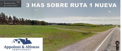 Gran Predio Sobre Ruta 1 Km 124, Entre Valdense Y Rosario