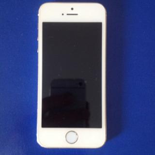iPhone 5s Com Problema Na Placa Mãe/memória