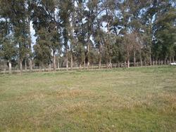 Terrenos En Gral Rodriguez (financiado)