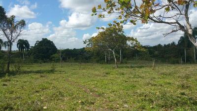 Terreno Urbanizable En San Felipe Con 398,749mts.-